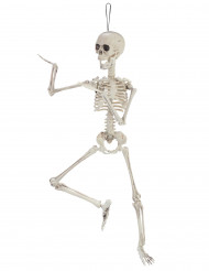 Décoration squelette articulé 48cm