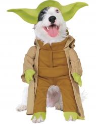 Déguisement pour chien Maître Yoda™