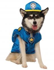Déguisement pour chien Chase Pat' Patrouille™