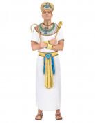 Também vai gostar : Disfarce de rei eg�pcio
