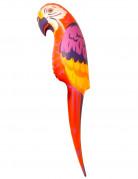 Vous aimerez aussi : Perroquet gonflable