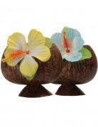 Vous aimerez aussi : Coupe Hawa� noix de coco