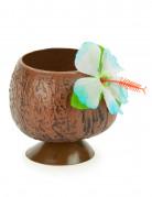 También te gustará : Copa hawaiana en forma de coco