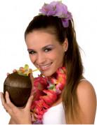 Vous aimerez aussi : Noix de coco Hawa�