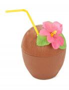 También te gustará : Coco hawaiano