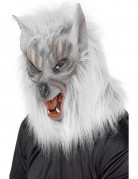 M�scara de hombre lobo para adulto ideal para Halloween