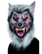 Vous aimerez aussi : Masque loup garou adulte