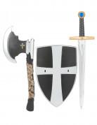 Bouclier �p�e et hache de chevalier m�di�val