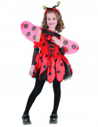 You would also like : Ladybird costume for girls.