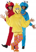 Sesame Street�  costume for couples