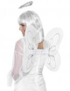 Vous aimerez aussi : Ailes blanches ange adulte