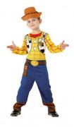 También te gustará : Disfraz de Woody� de Toy Story� para ni�o