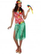 Vous aimerez aussi : D�guisement hawa�enne femme