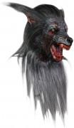 Ihnen gefällt sicherlich auch : Wolf Maske f�r Erwachsene