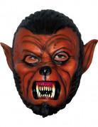 Vous aimerez aussi : Masque loup-garou f�roce adulte Halloween