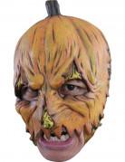 Ihnen gefällt sicherlich auch : K�rbis Maske Halloween f�r Erwachsene