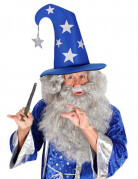 Chapeau magicien adulte