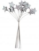 Vous aimerez aussi : Bouquet 12 �toiles Argent