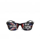 También te gustará : Gafas humor�sticas Punk Nunettes�