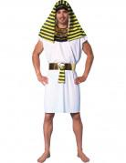 �gyptisches Pharao-Kost�m f�r Herren