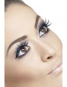 Faux cils longs  bleu toile d'araign�e adulte