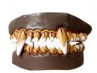 Vous aimerez aussi : Dentier vampire adulte Halloween