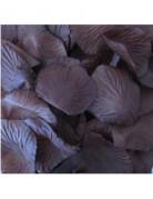 Vous aimerez aussi : 144 P�tales en tissu chocolat