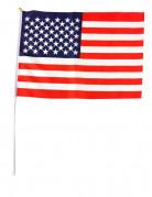 Vous aimerez aussi : Drapeau USA