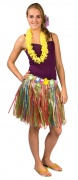 You would also like : Multicoluored Hawaiian skirt for adults