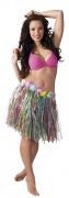 Multicoluored Hawaiian skirt for adults
