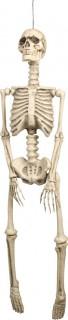 Décoration à suspendre squelette Halloween 95 cm