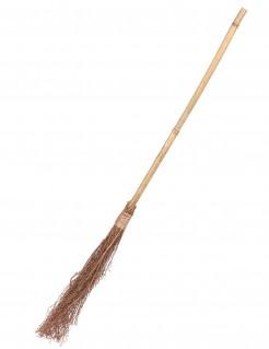 Balai de sorcière en bois 88 cm