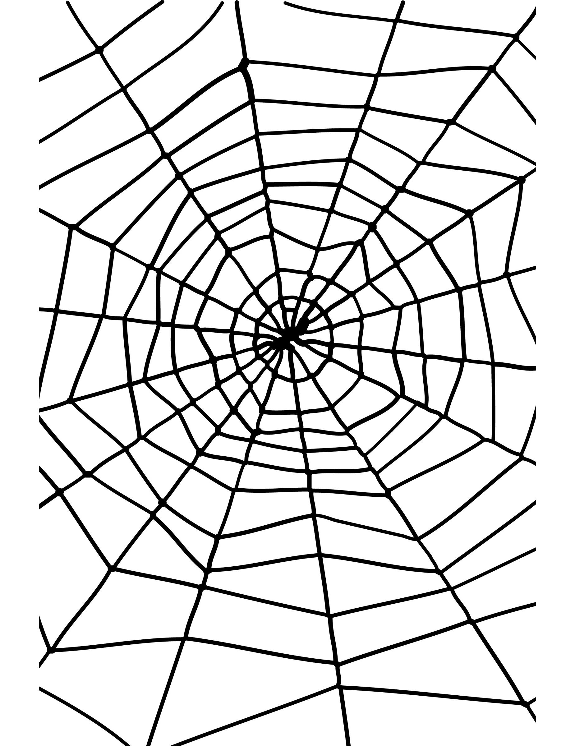 Toile d 39 araign e halloween deguise toi achat de decoration animation - Maquillage toile d araignee ...