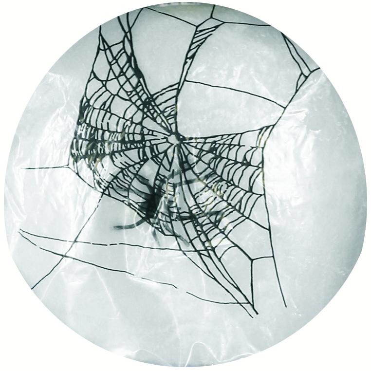 toile d 39 araign e d corative halloween deguise toi achat. Black Bedroom Furniture Sets. Home Design Ideas