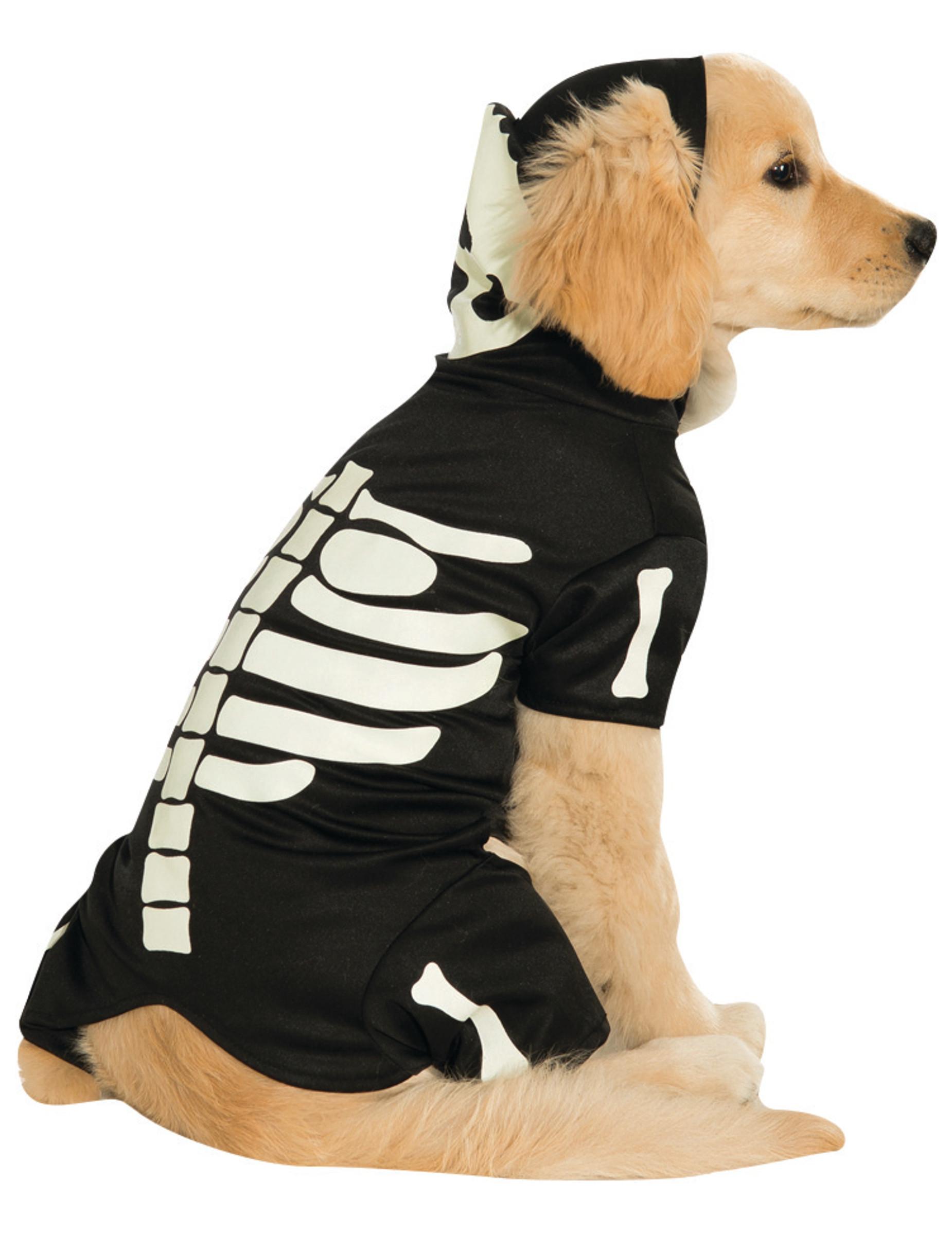 d guisement pour chien squelette phosphorescent deguise toi achat de accessoires. Black Bedroom Furniture Sets. Home Design Ideas