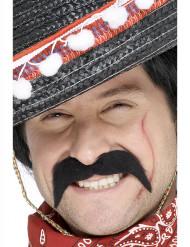 Moustache noire bandit mexicain adulte