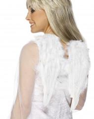 Ailes blanches à plumes pour adulte