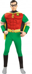 Déguisement deluxe Robin™ homme