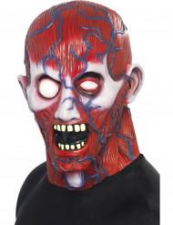 Masque intégral anatomie adulte Halloween