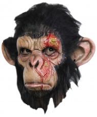 Masque singe infecté adulte Halloween