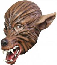 Masque loup garou adulte Halloween