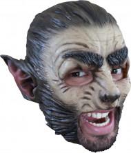 Masque loup adulte Halloween