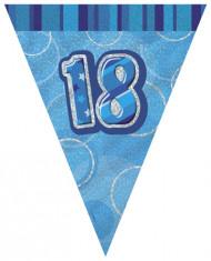 Guirlande Fanions bleue Age 18 ans