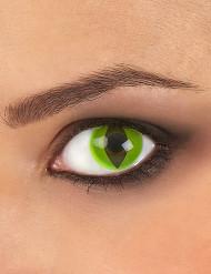 Lentilles fantaisie oeil reptile vert 3 mois adulte