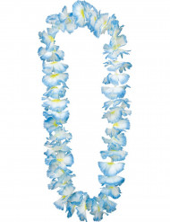 Collier Hawaï bleu