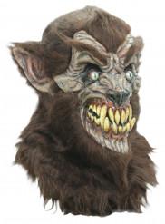 Masque intégral loup garou adulte Halloween