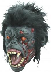 Masque chimpanzé zombie adulte Halloween
