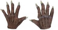 Gants courts vampire adulte Halloween