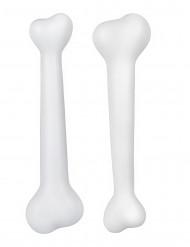 Kit deux os préhistoriques