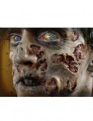 Blessures pourriture zombie transfert à l